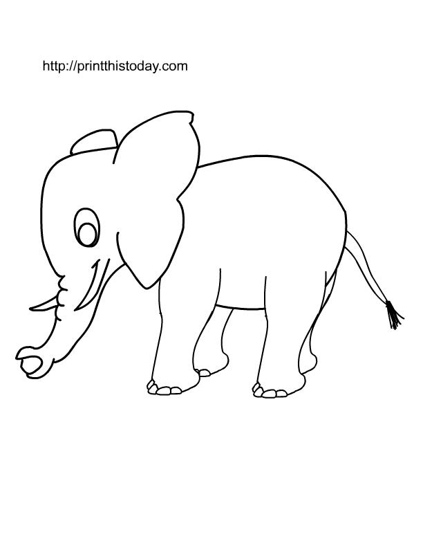 elephant box elephant templates